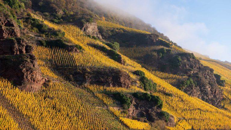 Weinlage Erdener Treppchen